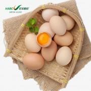 宏华富锌蛋30枚/箱 新鲜富硒土鸡蛋 低胆固醇鸡蛋 鲜鸡蛋