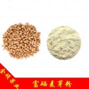 富硒麦芽粉 100ppm 食品级 麦芽提取物 天然富硒小麦粉