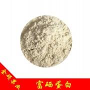 富硒蛋白 植物有机硒 蛋白硒 硒蛋白 补硒原料 富硒产品