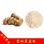富硒蘑菇粉 100ppm 富硒食用菌粉 有机硒蘑菇粉 蘑菇粉 专业种植