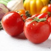 富锗番茄 有机蔬菜批发