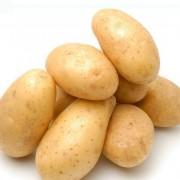 富铬马铃薯 土豆