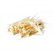 富钒金针菇