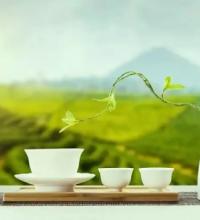 田园综合体建设,如何带入康体养生元素?
