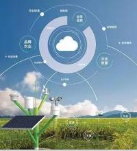 科技创新赋能农业未来